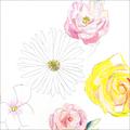 尾崎友直 / 『メネ, メネ, テケル, ウ パルシン』 (ROSE 187/ANALOG ALBUM+CD ALBUM)