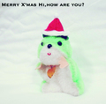Hi,how are you? 『Merry Xmas,Hi,how are you?』 (ROSE 232/7INCH SINGLE)