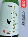 澤乃泉 特別純米中取り無濾過生 720ml<酒のかわしま別注品>