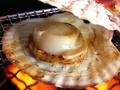 殻つきホタテ(冷凍)