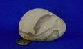 姫川薬石 盆石 水石 天然石絵 192g