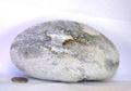 【薬石苑】姫川薬石 盆石 水石 超特選 忍石 天然石絵 1562g