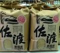 【3回頒布会・送料無料】佐渡産コシヒカリ ふすべの郷 5kg(白米)