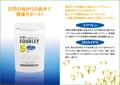 スクワレンS 【栄養機能食品(ビタミンE)】