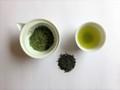 狭山煎茶 恵めぐみ