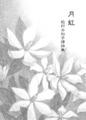 月虹 -松村みね子訳詩集-