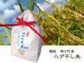 【海士町産】ハデ干し米