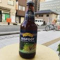 Sierra Nevada Bigfoot 355ml