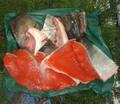 鮭 鍋セット(3~5人)
