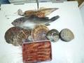 定期購入鮮魚セット3000