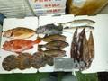 鮮魚セット7000