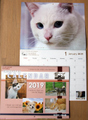 2019しっぽの会カレンダー