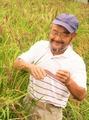 2017年産 上野さんのコシヒカリ(玄米) 2kg
