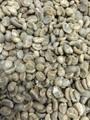 【生豆】 マンデリン (有機JAS)1kg