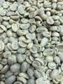 【生豆】ウガンダ(有機JAS) 1kg