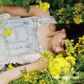 箕浦建太郎 - Of Kentaro Minoura CD
