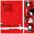 Teenage Slang Session / Teenage Dream LP