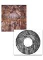 CD「VICE VERSA」+DVD「I FASCINATE」MUSIC VIDEO