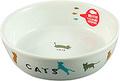 338 猫用陶器食器 遊ぶ猫
