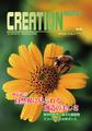 20号 「自然界に見られる創造の美しさ」