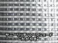 """サニーリッチハーフシェード""""かがやき""""(遮光率60~65%)―300cm幅"""