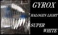 ジャイロX用ハロゲンライトバルブ品番319