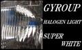 ジャイロUP用ハロゲンライトバルブ品番320
