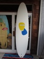 "07'08"" RYAN LOVELACE V-BOWLS MODEL"
