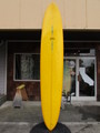 "10'06"" GARY HANEL WEST COAST CRUISER MODEL"