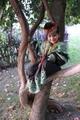 「木に登る少女」