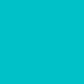 ねぷた(ねぶた)・凧用染料 500g 青竹