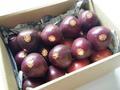 パッションフルーツ種子島産【20玉約1.5kg】
