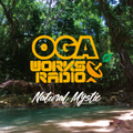 OGA WORKS RADIO MIX VOL.12 ?NATURAL MYSTIC?