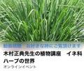 木村正典先生の植物講座 イネ科ハーブの世界
