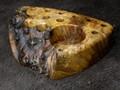 ツールスタンドBOKO(ボコ)-17012 花梨瘤白 XS -JH