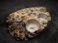 ツールスタンドBOKO(ボコ)-1606 ブビンガ瘤白 ーM