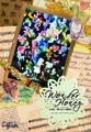 WonderHoney~あの娘は、可愛い気まぐれ魔法使い~ DVD(初演版)