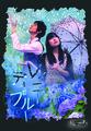 レイニーディブルー DVD