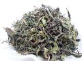 【会員限定予約販売】プレミア阿里山密香緑茶 50g