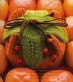 柿のポーチ キット 送料別