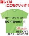 ヘヴィーウェイトTシャツ カラー (100~160cm) 085-CVT