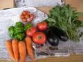季節の野菜大セット