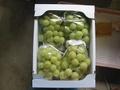 PG020 パイングレープ秀 2kg箱
