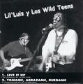 LIL'LUIS Y LOS WILD TEENS vs THE RIZLAZ(EP)