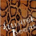 STEVE HOOKER & THE S'Ts/Alligator Boogie(45s)