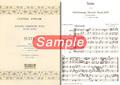 No.2 パレスのアリア <狩のカンタータ>(J.S.バッハ)BWV208より