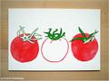postcard トマト/tomato