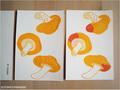 postcard きのこ/mushroom