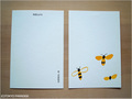 postcard ハニービー/honeybee