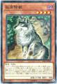 孤高除獣 (N-Rare/SAST-JP030)③闇4